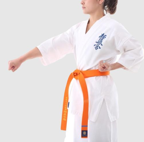 Магазин экипировки для карате karatestore.ru